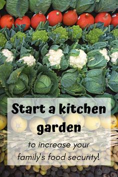 Increase your family's food security by starting a kitchen garden. Growing your own food takes less time, effort and money than you'd imagine. Start a kitchen garden and increase your family's food security. Fruit Garden, Edible Garden, Garden Picnic, Garden Soil, Organic Gardening Tips, Vegetable Gardening, Veggie Gardens, Organic Compost, Hydroponic Gardening