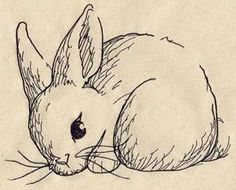 Bunny Sketch_image