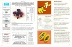 PORTAL DOS CROCHÊS: APLIQUES DE CROCHÊ FRUTAS E LEGUMES - 2° PARTE