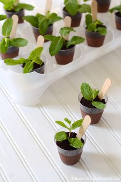 "For garden party.PLANT DESSERT: chocolate mousse/pudding ""soil"" + oreo crumbs ""dirt"" + mint leaf ""plant"" + wooden spoon ""plant labeller""here Snacks Für Party, 31 Party, Chocolate Pudding, Chocolate Cream, Mini Chocolate Desserts, Chocolate Soil, Chocolate Mousse Cups, Decadent Chocolate, Mini Desserts"