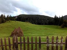 Hay harvest at the Red Lake area, Romania. Red Lake, White Envelopes, Fine Art America, Landscape Photography, Fence, Harvest, Greeting Cards, Erika, Landscapes