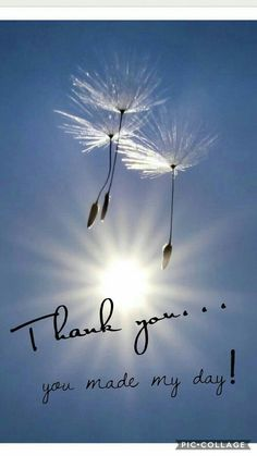 The Best Happy Birthday Memes - Mikela Memoirs Thank You For Birthday Wishes, Thank You Wishes, Thank You Greetings, Thank You Messages, Happy Birthday Quotes, Happy Birthday Images, Happy Birthday Cards, Birthday Greetings, Thank You Qoutes