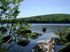Willard Pond ~ Antrim, NH  trails and non-motor boats only. #photo