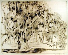 The Ancient Oak, Artist Hutty, Alfred Date 1932 Medium drypoint