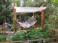 I want a hammock in our backyard!