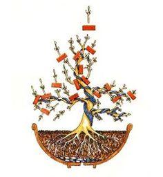 Criar bonsaiBonsai Ideas More Pins Like This At FOSTERGINGER @ Pinterest