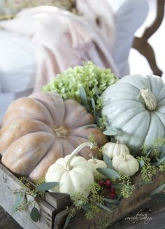 Do you remember last year when I gathered up some of those pretty   soft colored pumpkins and some of those little white baby pumpkins   a...