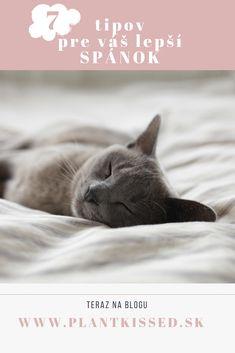 Ležíte v posteli, prehodnocujete, čo ste dnes povedali, nepovedali, urobili, neurobili, čo vás čaká zajtra, čo nestihnete, čo navariť, nakúpiť, odovzdať... Dosť! Urobte zo svojho odpočinku vašu prioritu a poďťe sa s nami pozrieť na zopár osvedčených tipov, ktoré zlepšia kvalitu i dĺžku vášho spánku! Cats, Health, Blog, Animals, Gatos, Animales, Health Care, Animaux, Blogging