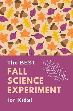 This is hands-down my favorite science experiment for kids! Adults will love learning why leaves change color, too. A great fall activity for kids! Creative Activities For Kids, Autumn Activities For Kids, Kids Learning Activities, Art Activities, Toddler Science Experiments, Elementary Science, Science For Kids, Arts And Crafts Projects, Science Projects