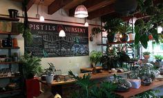 Located on Portland's North Mississippi Avenue, Pistils Nursery is an unexpected oasis of flora...