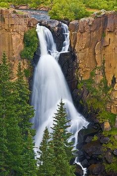 Creede, Colorado favorite summer family vacation - 4 hrs from Denver