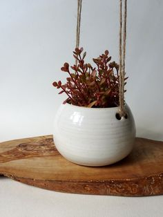 Small Hanging Planter  Spotted milky white hanging by viCeramics
