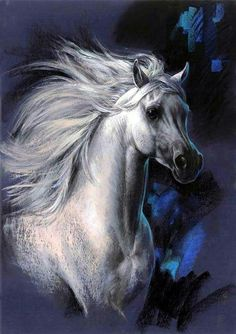 Painting of Stunning white grey Arabian with crazy wild mane flowing in the wind. Interesting pops of blue color in the background. Please also visit www.JustForYouPropheticArt.com for colorful art paintings (some of horses) you might like to pin. Thanks for looking!