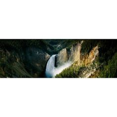 High angle view of a waterfall in a forest Lower Falls Yellowstone River Yellowstone National Park Wyoming USA Canvas Art - Panoramic Images (12 x 36)