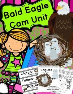 Product Description: Bald Eagle Cam Unit to use with eagle cameras such as the Decorah Eagle cam. Activities for students across the curriculum. Incorporate Eagle fun into all parts of the day! Kindergarten Science, Teaching Science, Bald Eagle Cam, Decorah Eagles, Vocabulary Cards, Learning Tools, Book Worms, Lesson Plans, Homeschooling