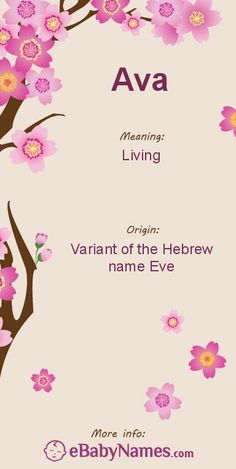 The origin & meaning of the name Ava