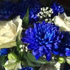 Kuvahaun tulos haulle sinivalkoinen kukkakimppu Plants, Jewelry, Jewlery, Jewerly, Schmuck, Jewels, Plant, Jewelery, Fine Jewelry
