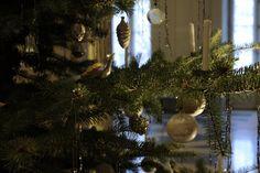 Mini weihnachtsbaum schweiz