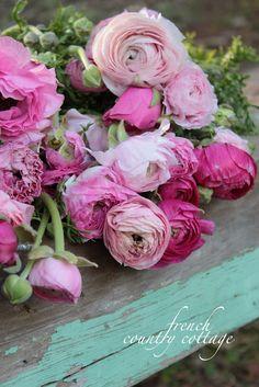 shabby roses...