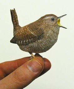Les oiseaux en paper toys ultra réalistes de l'artiste hollandais Johan Scherft, qui imagine lui même ses modèles. Chaque oiseau est fabriqué à partir de p