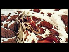Hide And Seek Bev Doolittle - Free Animals Wallpaper Image with Horses