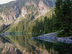 Mowich Lake, Mt. Rainier by Shea Munroe