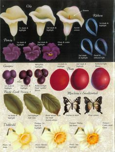 Arum lilies, pansies, and even daffodil step-by-step.