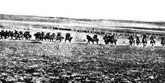 Beersheba centenary The charge that changed the Hunter - Newcastle Herald Local History, World War I, Newcastle, Battle, Australia, Change, News, World War One, Australia Beach