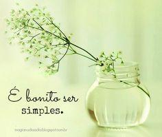Magia no Dia a Dia: Simplicidade