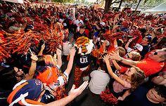 auburn tigers football 2013 - Google Search