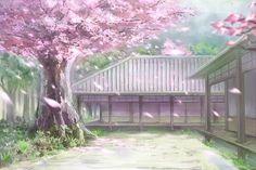 Touhou cherry blossoms c_z_ nobody petals scenic touhou tree wallpaper Anime Scenery Wallpaper, Anime Backgrounds Wallpapers, Episode Backgrounds, Flower Backgrounds, Tree Wallpaper, Anime Cherry Blossom, Cherry Blossom Background, Cherry Blossoms, Sakura Anime