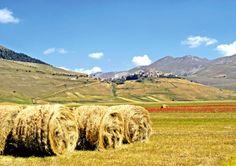 L'altopiano di #Castelluccio  di #Norcia è un versante di faglia originato dalla distensione tettonica che, circa 1 milione di anni fa fece separare e allontanare immani blocchi rocciosi, dando così origine a una vasta depressione. L'Altopiano di Castelluccio, i misteriosi #MontiSibillini, con gli imponenti Monte Vettore e Monte della Sibilla, costituiscono un autentico eden per gli amanti  dello sport e della natura. http://www.lavalnerina.it/dett_luogo.php?id_item=97