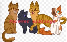 Brackenfur, Cinderpelt, Thornclaw, and Brightheart. They are actually siblings and one litter, this has been confirmed.