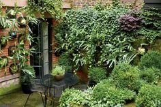 Julianne Moore's Townhouse Garden