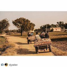 #Repost @djyadav with @repostapp To get featuredtag your post with #talestreet  That beautiful #life in the #villages of #Rajasthan #talestreet #travel #travelers #traveling #travelling #travelgram #travelingram #canon #desertlife #traveller #wanderlust #rural #stories #desert #milestones  #travelindia #travelpictures #wanderer  #people #delhi_igers #photostory #lp #_oye #_soi #vsco #vscocam