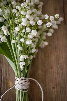 fresh bunch of white blooms #flowers