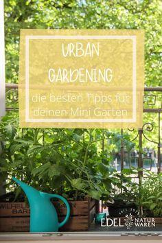 """Ein eigener Garten mit weichem, grünem Gras, Beeten voller Gemüse und einem Apfelbaum - ein Traum für jeden Gartenliebhaber! Doch den meisten von uns steht leider kein großer Garten zur Verfügung, besonders in der Stadt. Hol dir einen Garten auf die Fensterbank oder vielleicht willst du sogar Gemüse auf dem Balkon anbauen? Die besten Tipps für dein Vorhaben """"Gärtnern in der Stadtwohnung"""" oder """"Urban Gardening"""" haben wir in diesem Blog für dich zusammengefasst. #edel-naturwaren.de Gras, Letter Board, Gardening, Lettering, Edible Plants, Minimalist Living, Large Backyard, Apple Tree, Beauty Tutorials"""