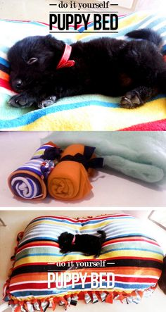 DIY Cheap and Easy Pet Bed Tutorial from Made in Pretoria here. This uses the same technique for making those fleece blankets. Please watch your dogs with any toys or beds with ties like these. You don't want to spend $1,000 on surgery to get non food items out of your dog (from painful personal experience). For lots more PET DIYs from water bowls to mud mittens to cat houses go here: truebluemeandyou.tumblr.com/tagged/pets