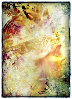 Une fille en rose by Mye #imye  ☆Prints available ☆ #art #prints #artist #winnipeg #digitalart #design #style #artistry #dailyart www.imye.webs.com #princess #fairytaleart #fantasyart  #retrostyle #beauty #photo