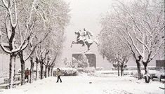 The Statue of Alexander the Great covered in snow in the center of Thessaloniki, Macedonia, Greece Macedonia Greece, Greek Beauty, I Love Winter, Alexander The Great, Christmas Mood, Thessaloniki, Winter Theme, Winter Holidays, Beautiful Places