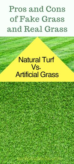 Pros and Cons of Fake Grass and Real Grass. What are the pros and cons between artificial grass and natural grass. Fake Lawn, Fake Grass, No Grass Backyard, Backyard Landscaping, Landscaping Ideas, Inexpensive Landscaping, Artificial Grass Installation, Artificial Grass Ideas, Artificial Turf