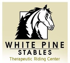 Equine Assisted Therapy located just North of Columbus, Ohio.  Please help to save their  farm.