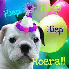 7 Beste Afbeeldingen Van Hond Verjaardag Bday Cards Birthday