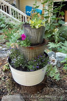 I had some old rusty buckets and an ugly stump to disguise. So I came…