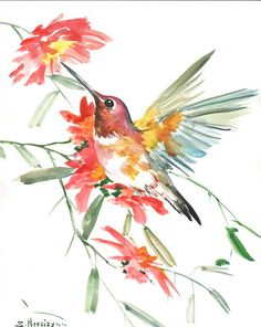 Americanflat Hummingbird Flowers by Suren Nersisyan Framed Painting Print Frame Color: White Watercolor Bird, Watercolor Animals, Watercolor Paintings, Bird Paintings, Four Seasons Painting, Painting Frames, Painting Prints, Hummingbird Flowers, Hummingbird Drawing