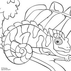chameleon coloring page pin your favorite animal pin now with the hashtag for a chance to be featured on board printables for kids