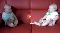 Vídeo Fantástico da Conversa entre 2 Bebés
