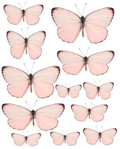 Furniture decals shabby chic french image transfer vintage pink butterflies butterfly label script art crafts scrapbooking card making diy Vintage Butterfly, Pink Butterfly, Butterfly Mobile, Vintage Pink, Etsy Vintage, Papillon Rose, French Images, Flat Background, Image Nature