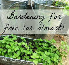 Gardening for free i