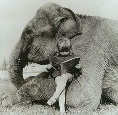 Knee socks, sandals, a good book and an elephant friend.  To be so content.